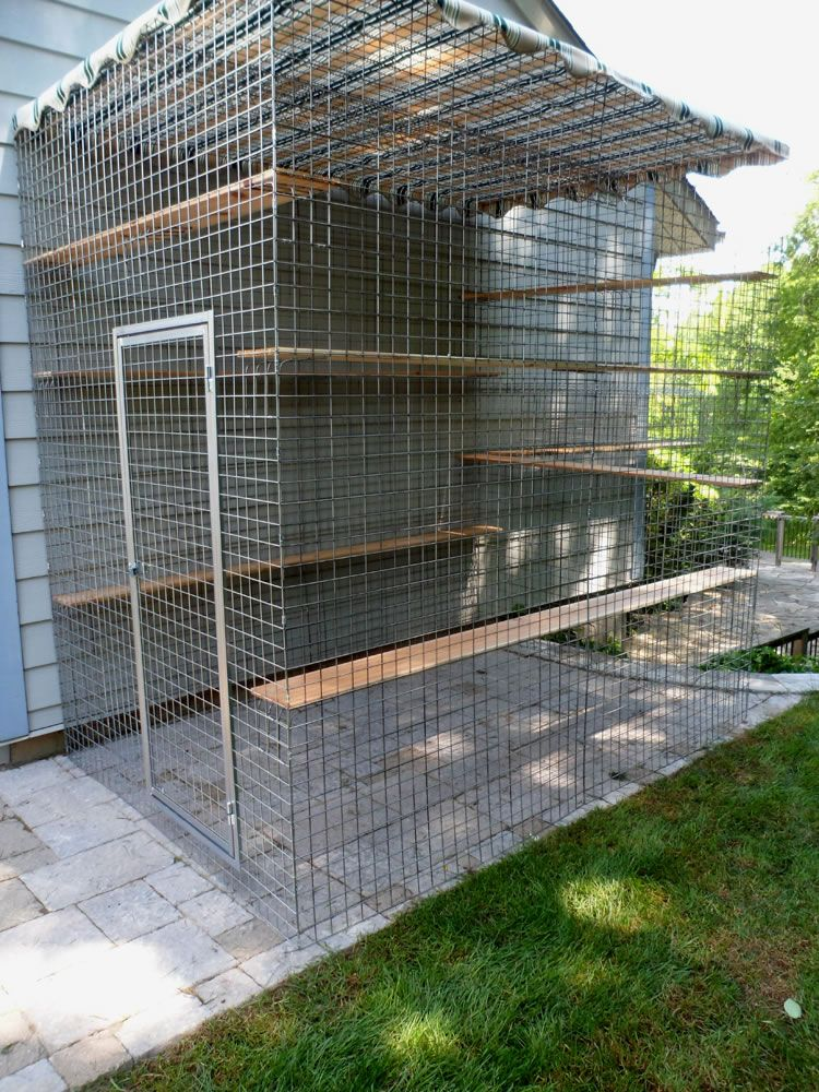 Outdoor Patio Dog Beds: Safe, Friendly Cat And Dog Enclosures » Home Of Habitat