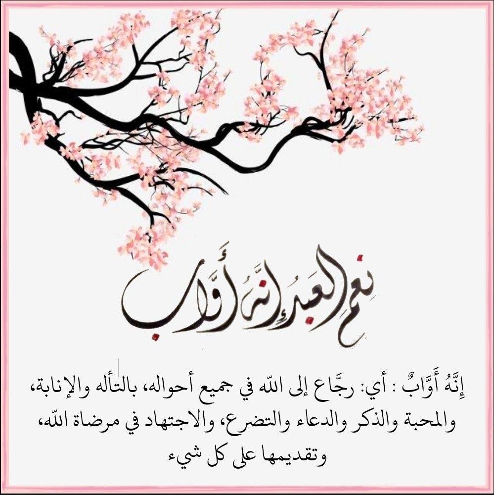 قرآن كريم آية ن ع م ال ع ب د إ ن ه أ و اب Arabic Calligraphy Calligraphy