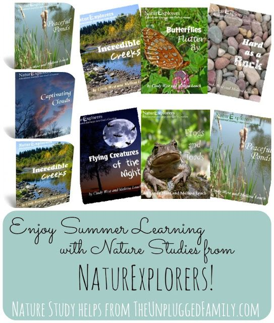 The Unplugged Family: Enjoy Summer Learning with Engaging Nature Studies from Shining Dawn Books