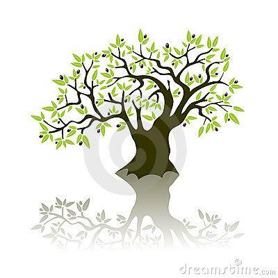 Olive Tree Tree Illustration Olive Tree Drawing And Illustration