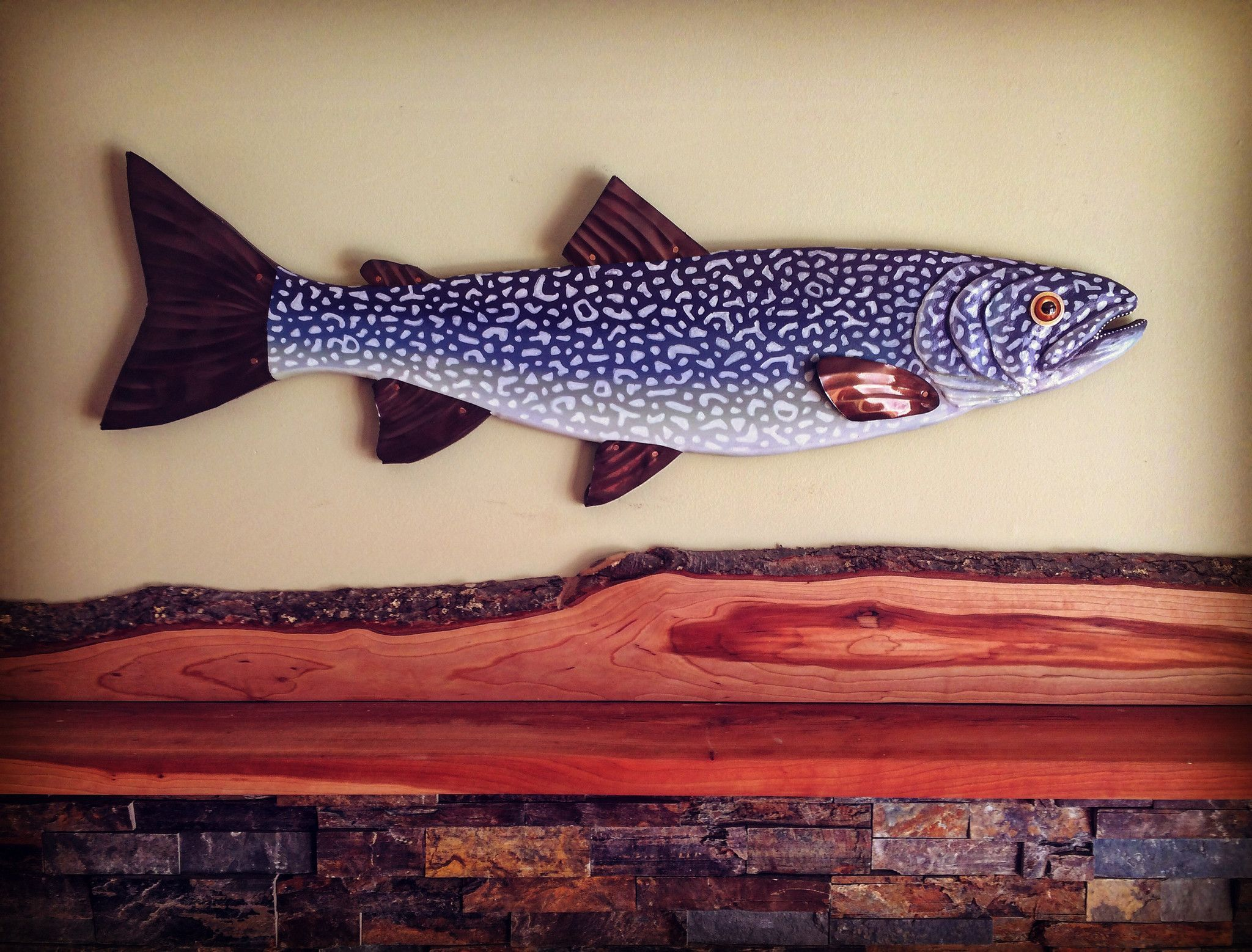 lake trout trout deep water and lakes