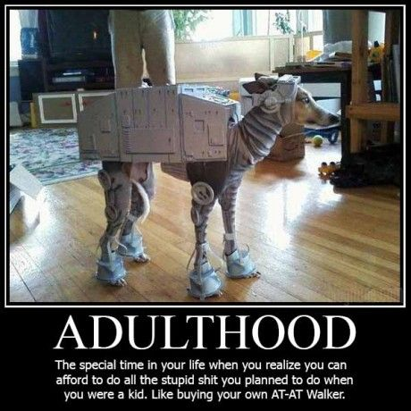 Build Your Own AT-AT Walker. Sure, there are a few kinks to work out, including, but not limited to, its innate need to attack household pets, chase cars, SQUIRREL! roll in mud, SQUIRREL! attempt to eat pizza delivery men, SQUIRREL! etc.  Waste management may also be an issue…