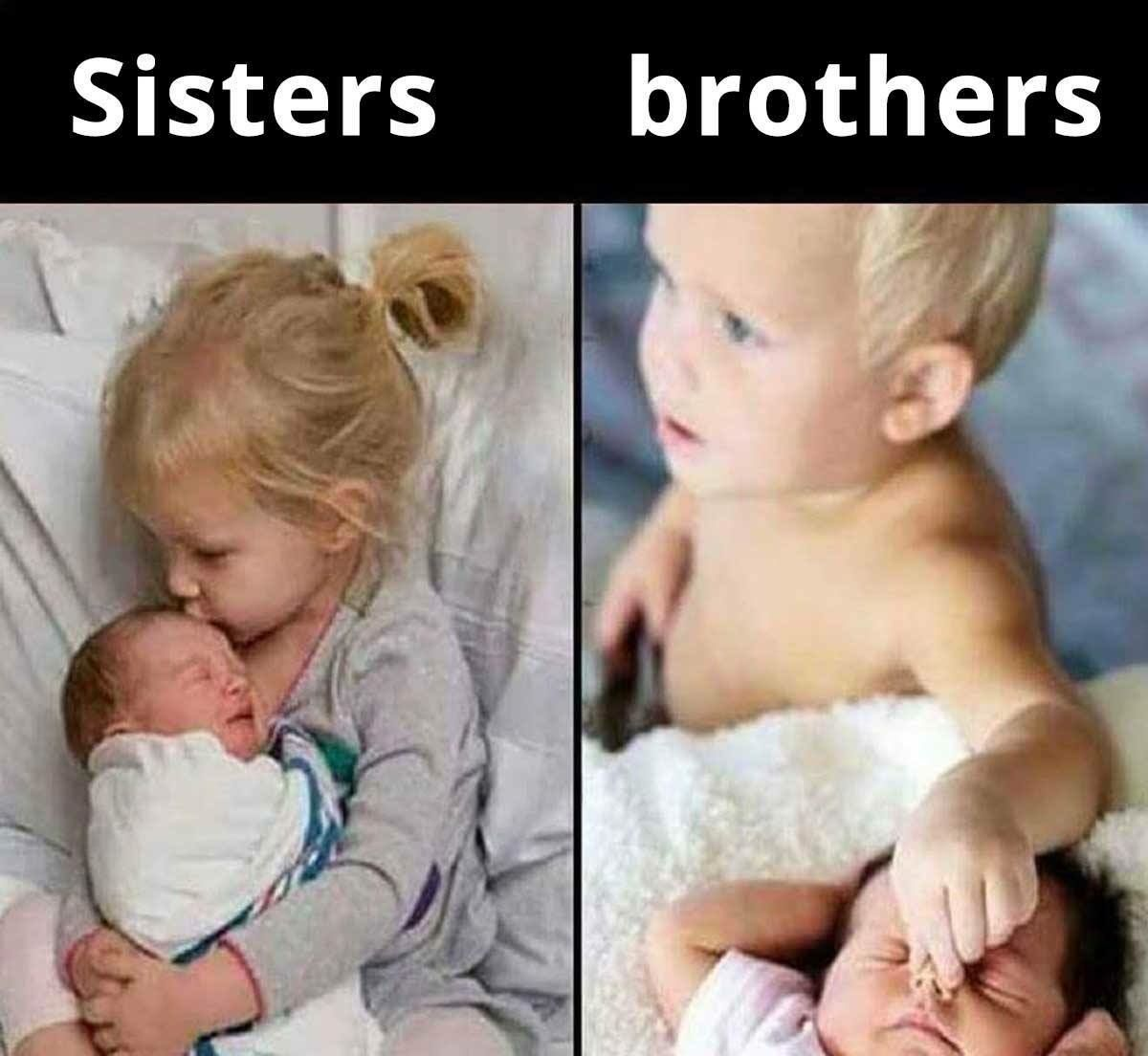 Sisters Vs Brothers