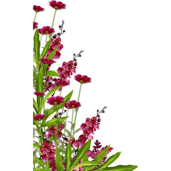 Corner Floral Garden Area: Pin By Keepsake Designs On Lovely Polyvore Sets!!