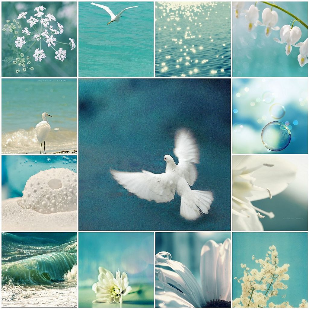 Turquoise & White #collageboard