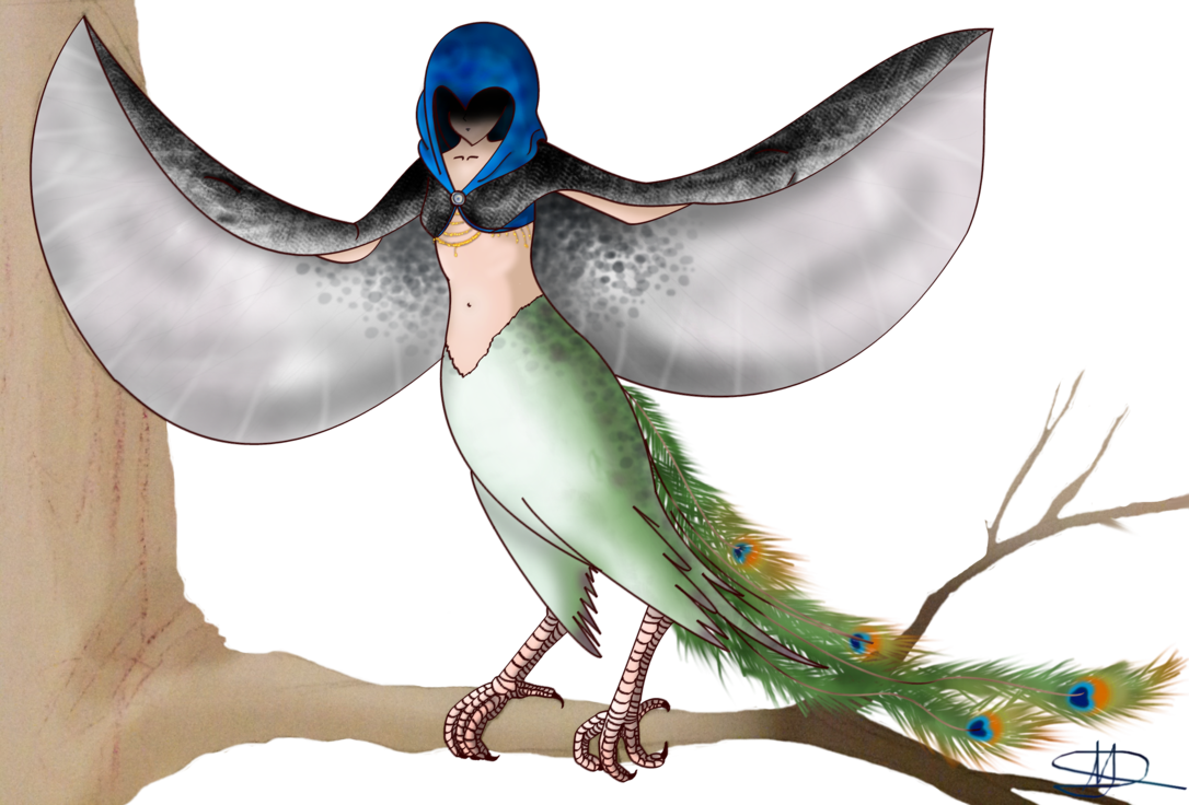 Day 1 Peacock harpy, 30 day monster girl challenge by Unseenivy253
