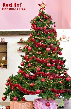 1000+ images about Christmas Tree Decorating Themes on Pinterest ...