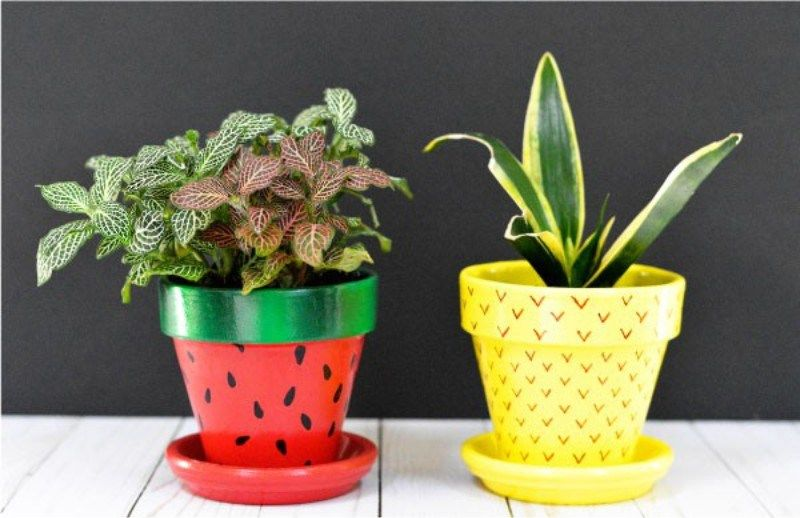 clay pot paint ideas 2 Creative DIY Terracotta Pot Painting Ideas!  Terracotta pots