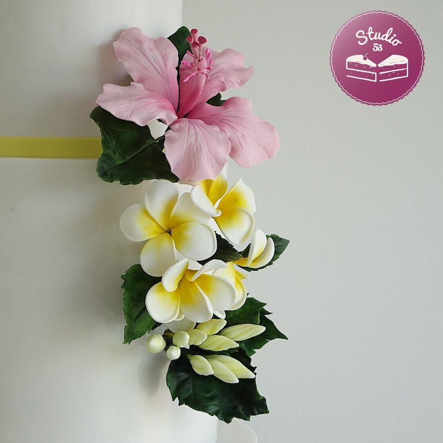 Hibiscus and frangipani gumpaste flowers luau ideas pinterest hibiscus and frangipani gumpaste flowers izmirmasajfo