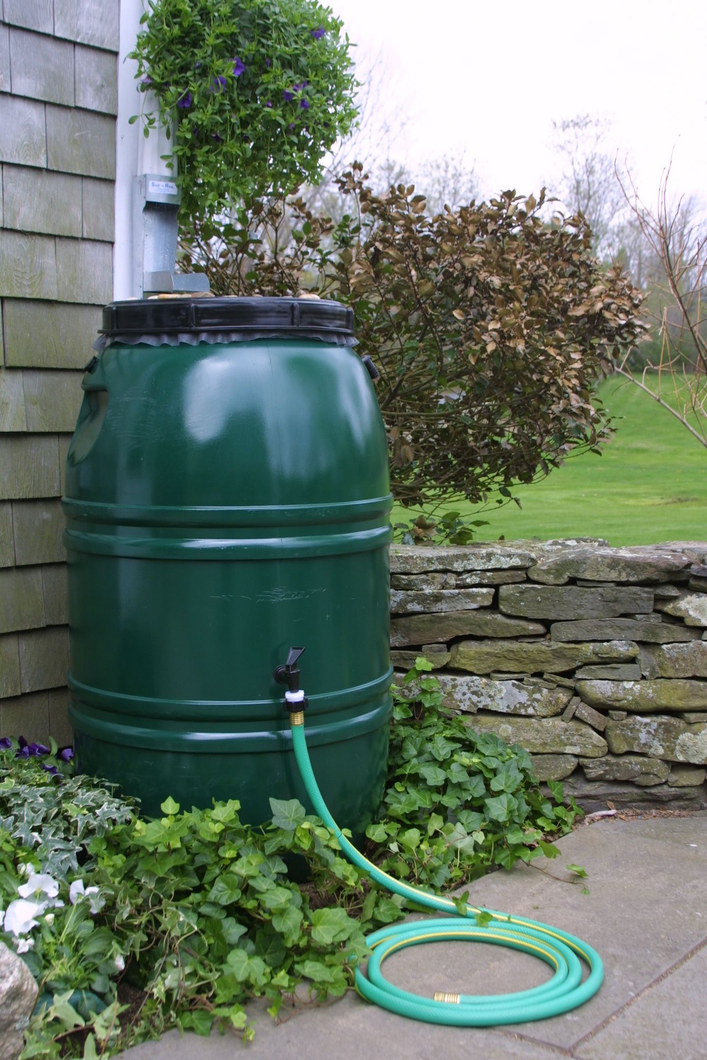 Simplest Solution Ever To Harvesting Rain Water A Rain