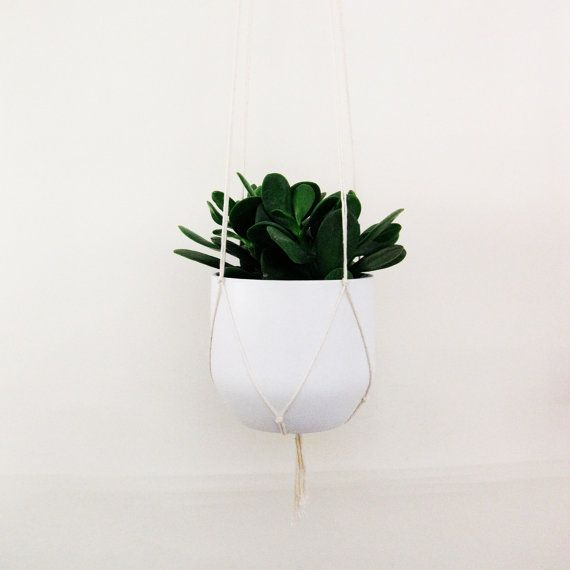 Simple Plant Hanger For Pots Of All Sizes Biodegradeable Cotton
