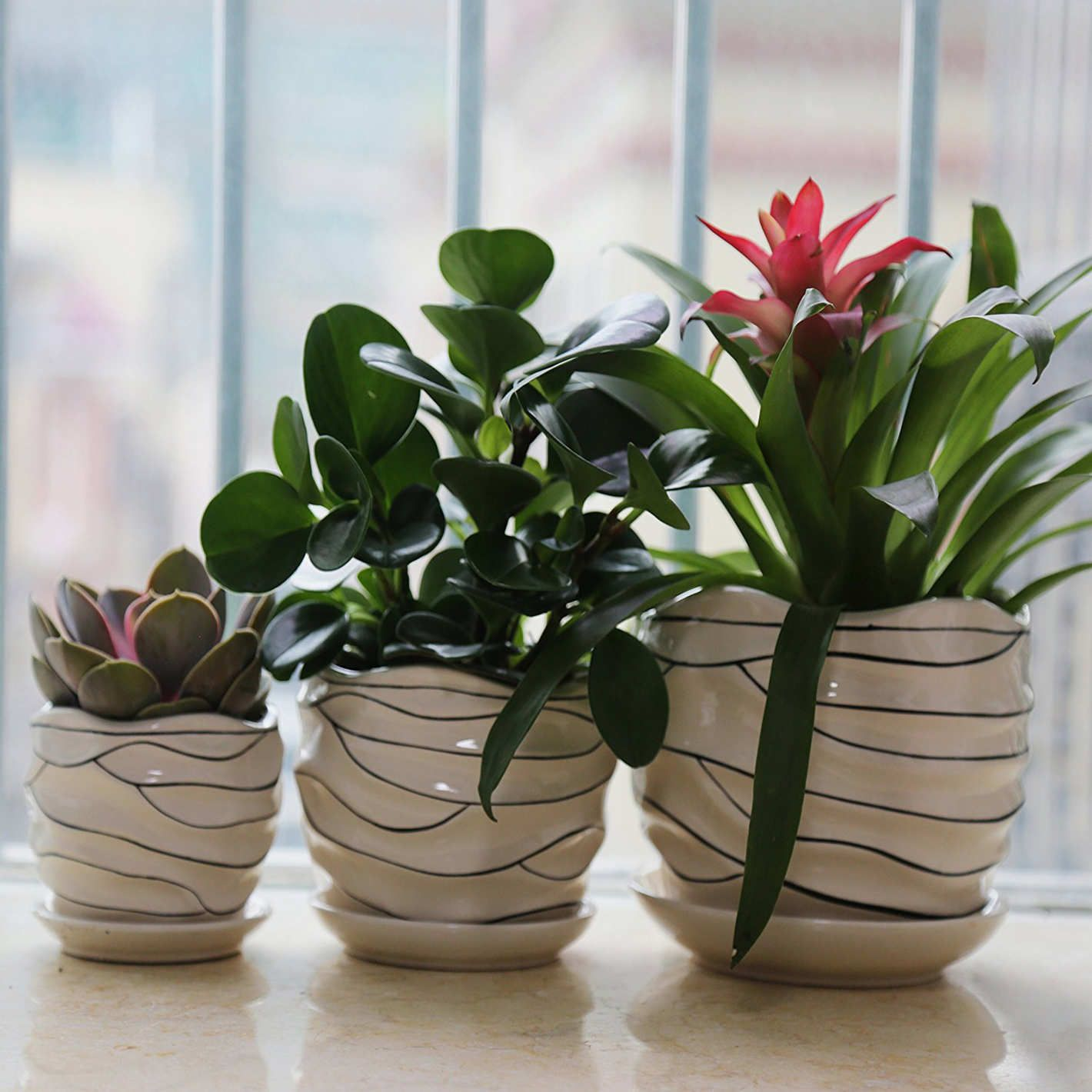 The Best Pots And Planters On Amazon Ceramic Plant Pots Indoor Plant Pots Plants