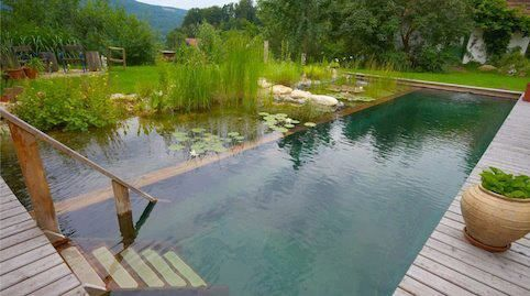 An Alternative To Chlorine Pools Natural Pools Use Plants To Keep Water Clean And Clear Do You Like Natural Swimming Ponds Natural Swimming Pools Natural Pool