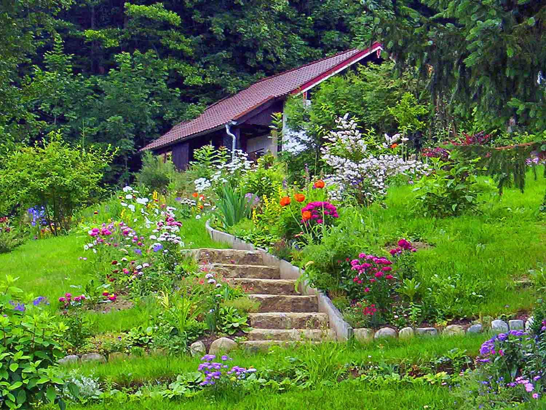 Planter Dans Un Talus aménager un talus | amenagement jardin, jardins et