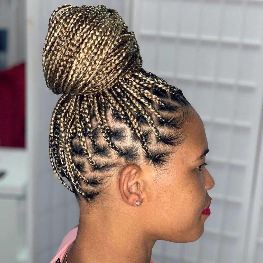 Braided Hairstyles 2020 In 2020 Hair Styles Braided Hairstyles African Hair Braiding Salons