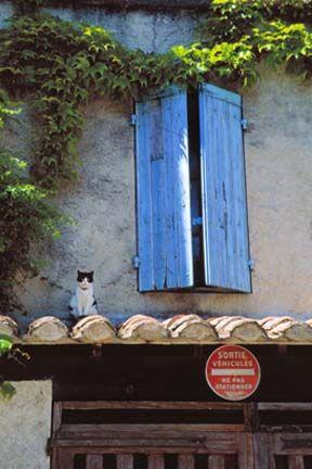 France Cat On Roof J Adore Paris Blue Shutters France