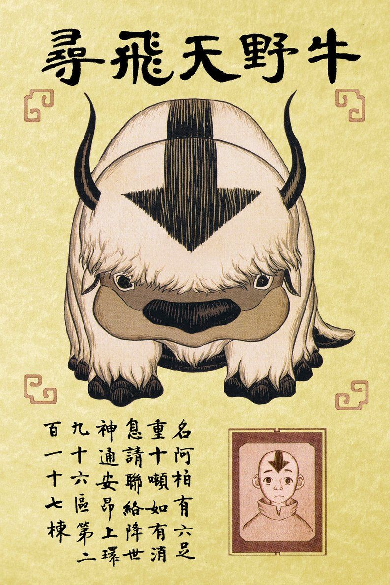 Avatar the Last Airbender: Appa and Aang Wanted Poster.