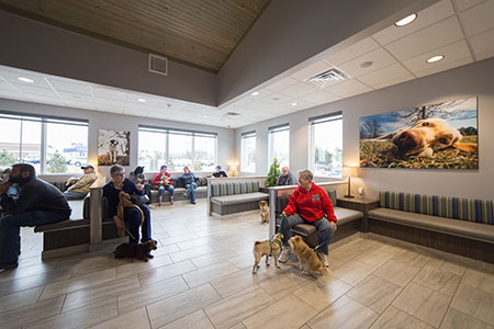 2019 Dvm360 Hospital Design Competition People S Choice Award Winner El Paso Animal Hospital Hospital Design Design Competitions Hospital