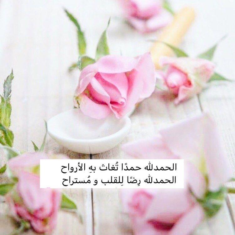 الحمد لله على صفاء النفس وبياض القلب وصدق الاحساس ورضى الله والوالدين Arabic Quotes Real Life Quotes Proverbs Quotes