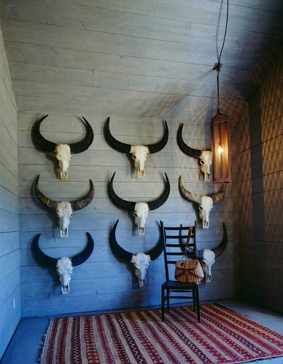 Weary of antlers as decor are bullhorns the answer lately we  ve been spotting chic rooms decorated with wall mounted both real and faux abov also favorites new diy crafts rh pinterest