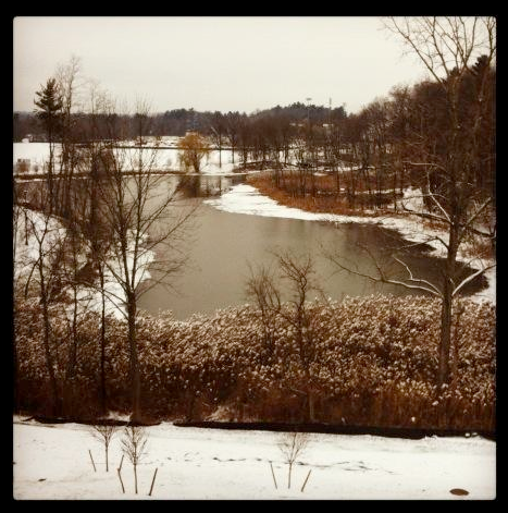 Has any one been to the lake behind campus?