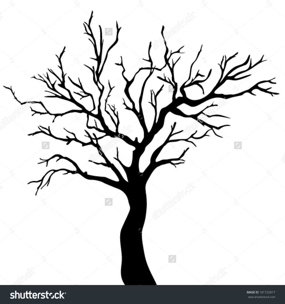 Big Dead Tree Drawing Ngorongub