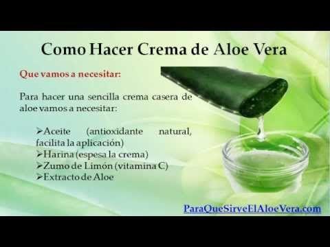 Como hacer crema de aloe vera para que sirve el aloe - Como cuidar una planta de aloe vera en casa ...