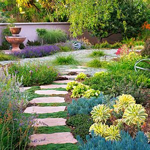 Water Wise Garden Design Guide Succulent Landscaping Front Yard Drought Tolerant Garden Water Wise Landscaping