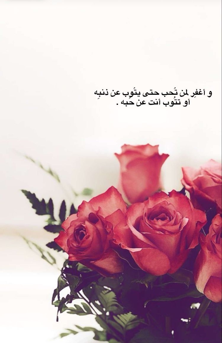 Pin By Noor Kareem On سنابات Arabic Quotes Rose Flower Pictures Friends Quotes