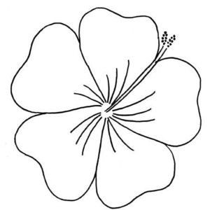 Flower Outline Plz Use Hawaiian Flower Drawing Embroidery Patterns Free Flower Outline