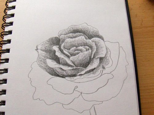 so zeichne ich eine rose monika kunze bye pinterest zeichnen blumen zeichnen und. Black Bedroom Furniture Sets. Home Design Ideas