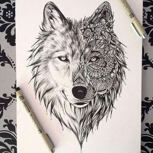 zentangle animals wolf - Google Search | Zentangle | Pinterest ...