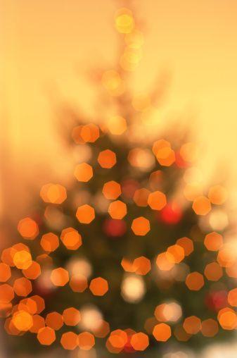 orange christmas tree Very cool photo blog World of Orange