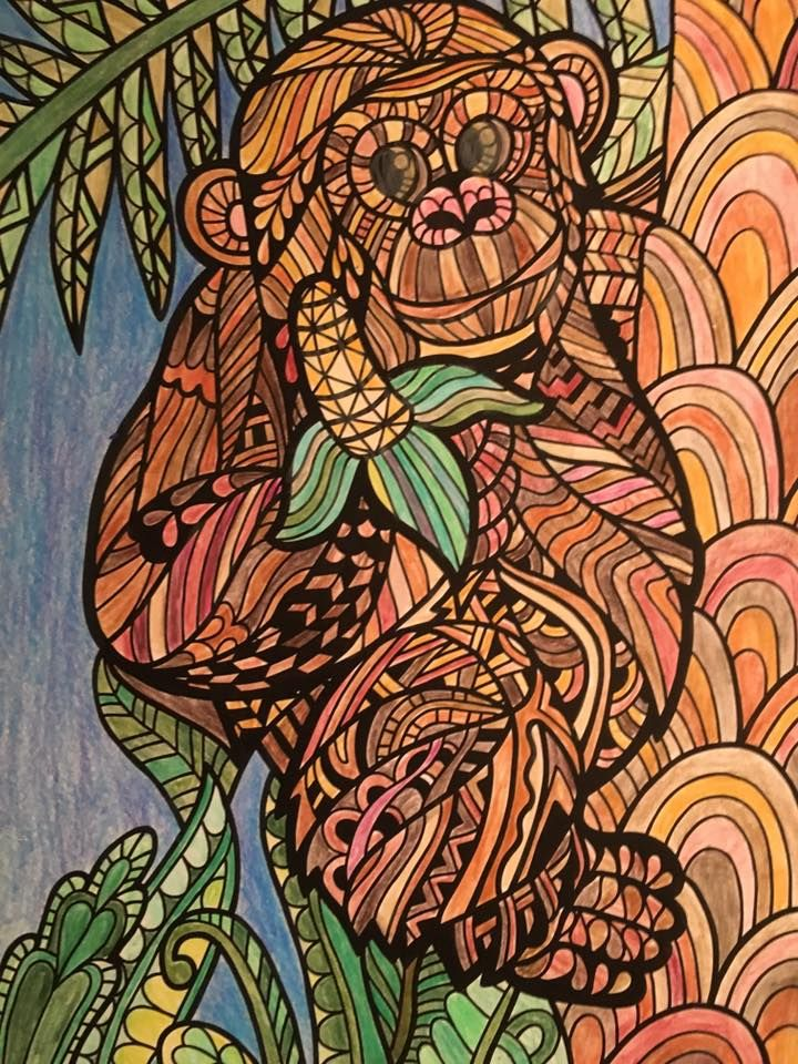 ColorIt Wild Animals Adult Coloring Book Colorist:Karen ...