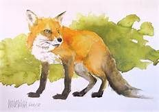 FOX ART - Yahoo Image Search Results