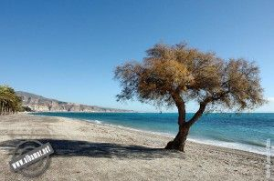 playa_de_los_bajos_el_rompillo_roquetas_de_mar_almeria_9197