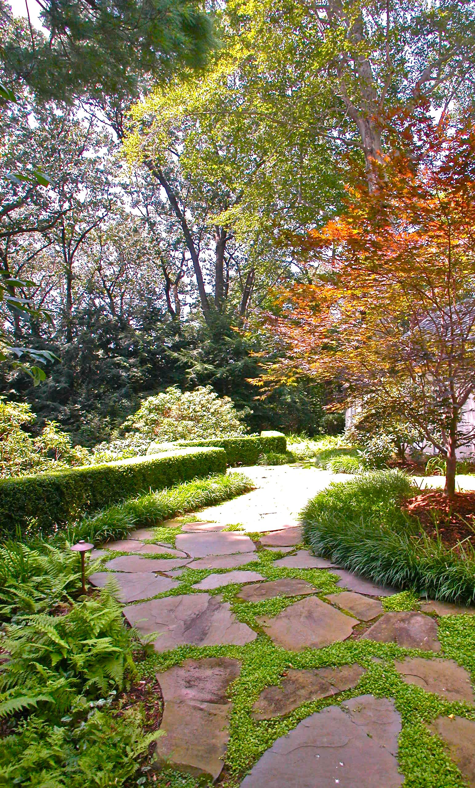 Broken Bluestone With Vegetated Joints Create A Wonderful Natural Entry Along With The Surrounding Plantings Of With Images Rock Garden Design Garden Images Garden Stones