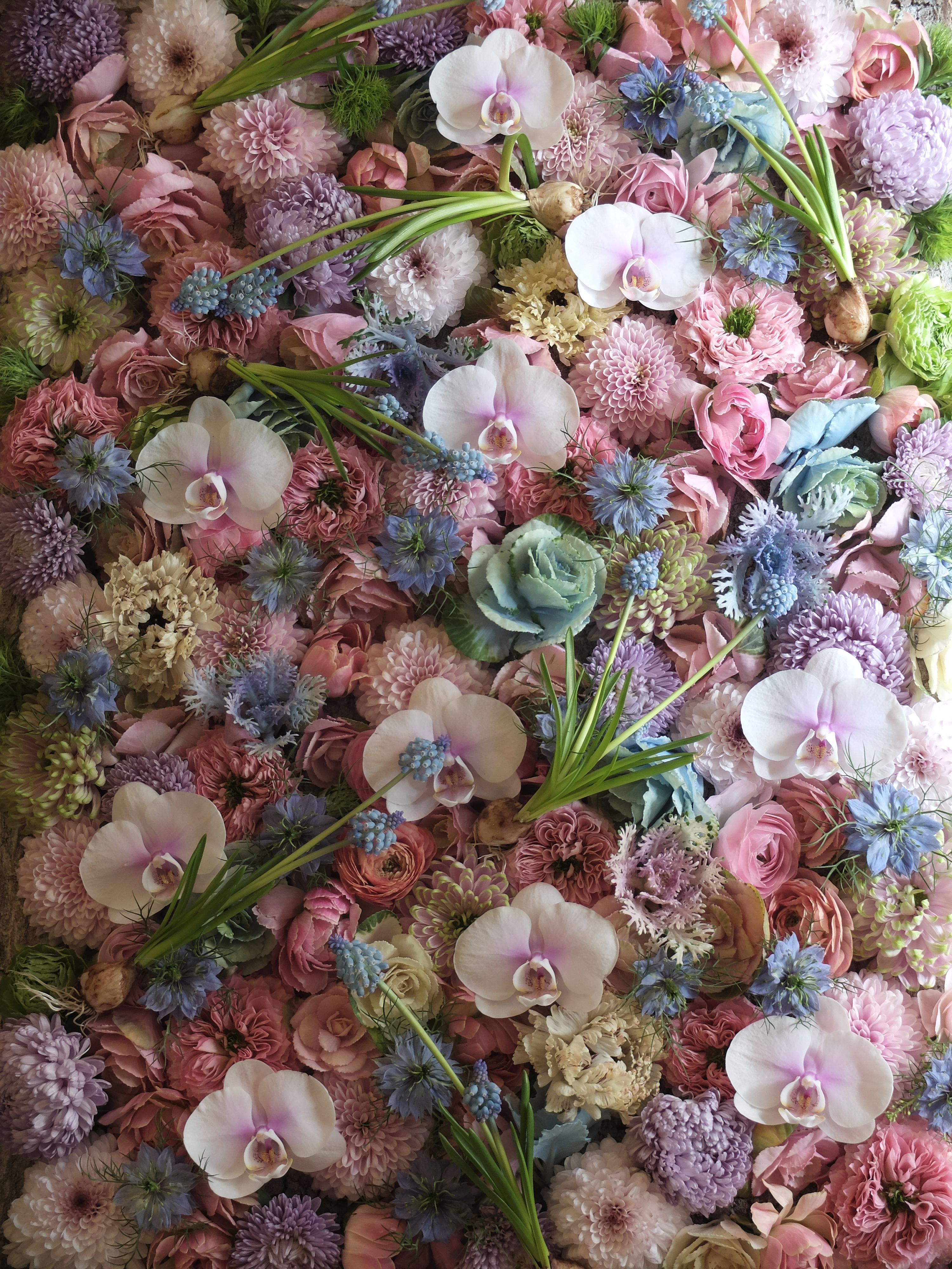 Orchidkaleranunculusasterrosemum And Muscari Weddings