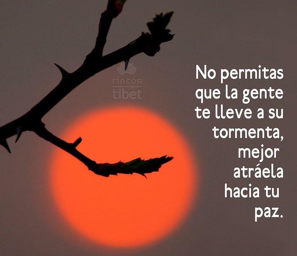 No permitas que la gente te gente te lleve a su tormenta mejor atraela hacia tu paz Cosas Lindas Frases Bonitas