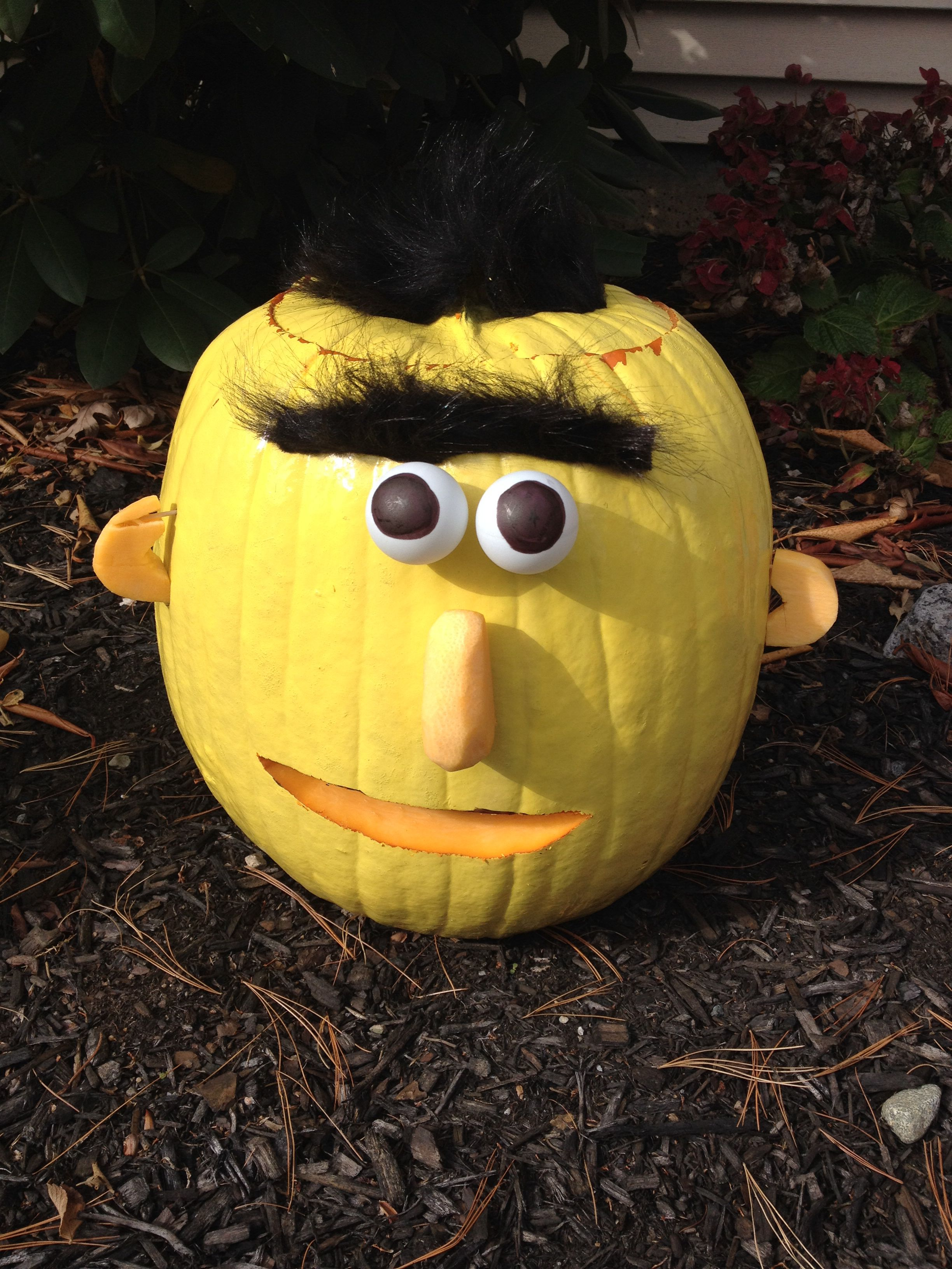 Sesame Street Bert Pumpkin Decorations Streets Trick Or Treat Jpg 2448x3264