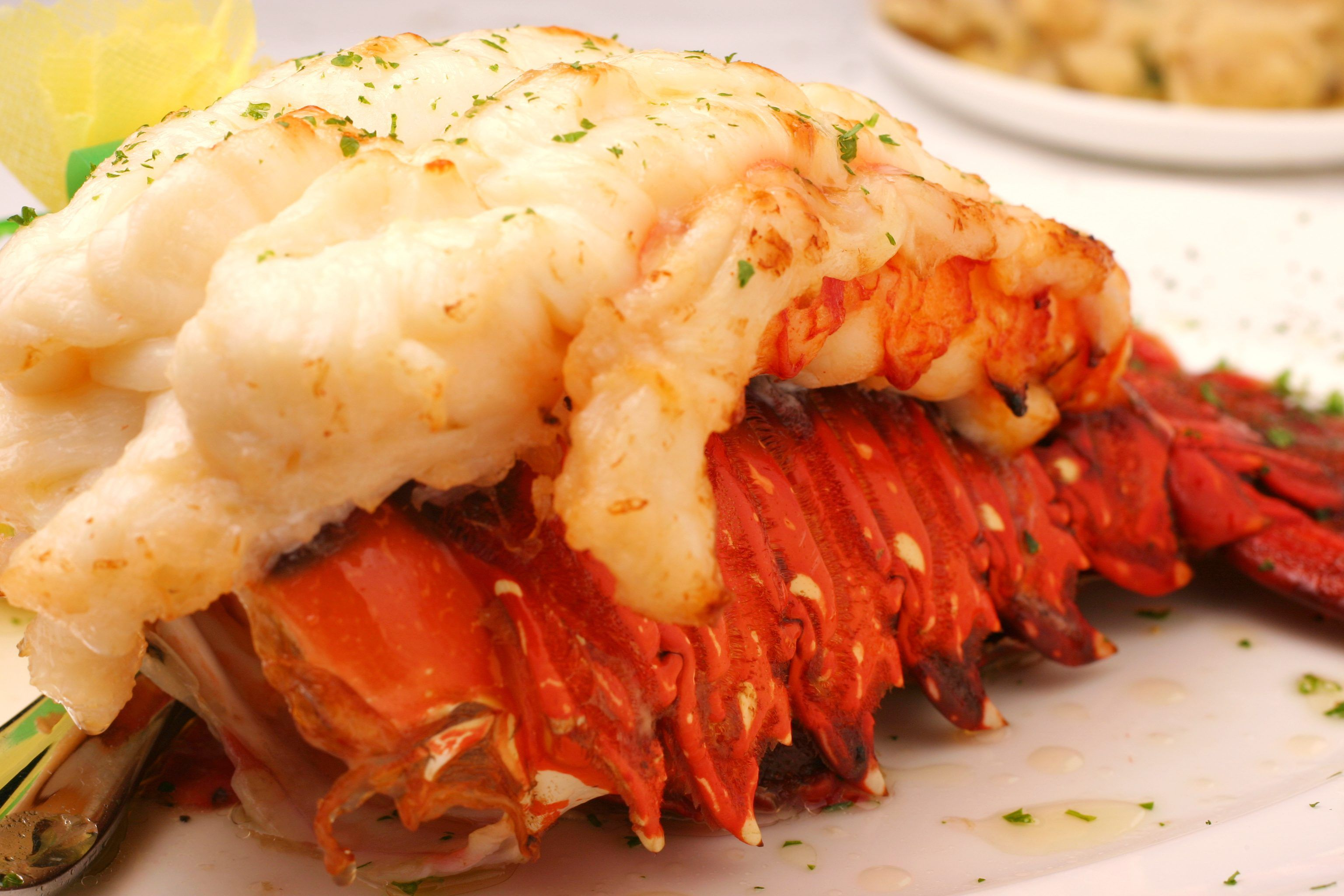 How to Cook a 1-Pound Thawed Lobster Tail images