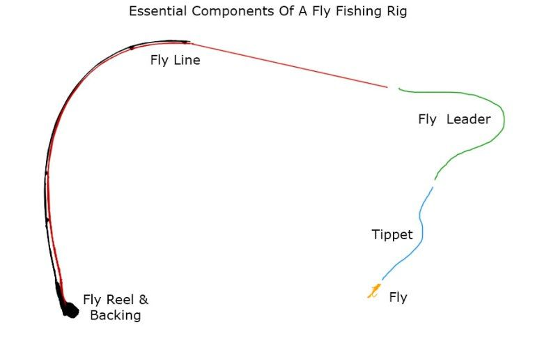 How To Match A Fly Rod Fly Reel Fly Line Leader And Tippet Fly Reels Fly Rods Fly Fishing