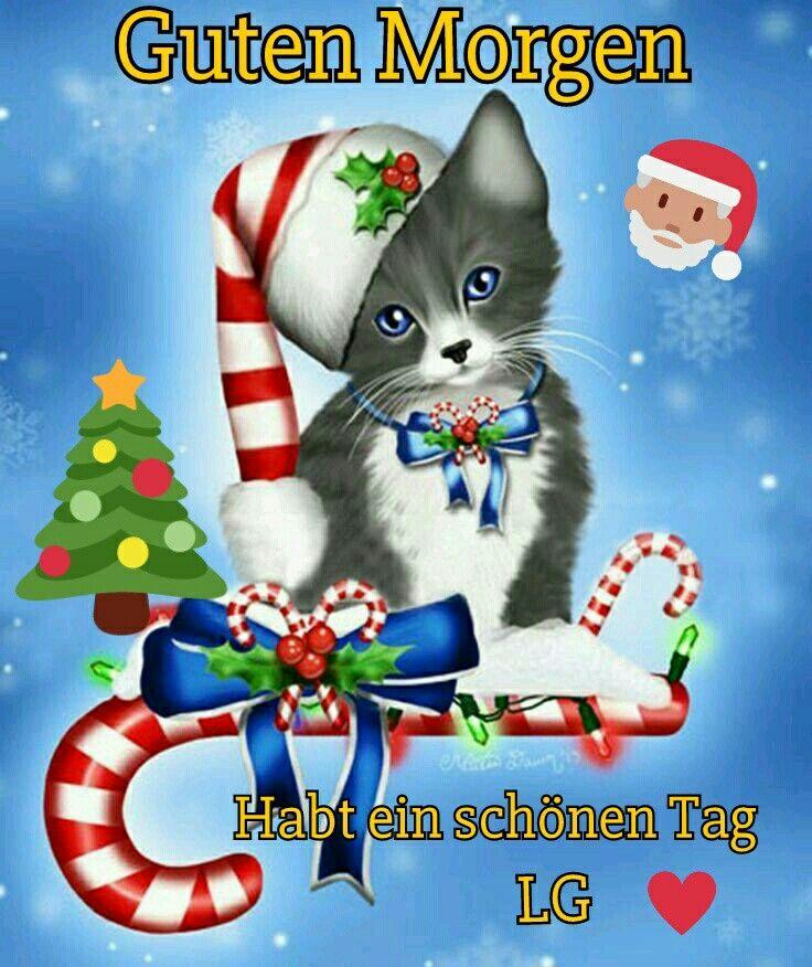 Pin Von Karin Auf Sprüche Weihnachtskunst Katze