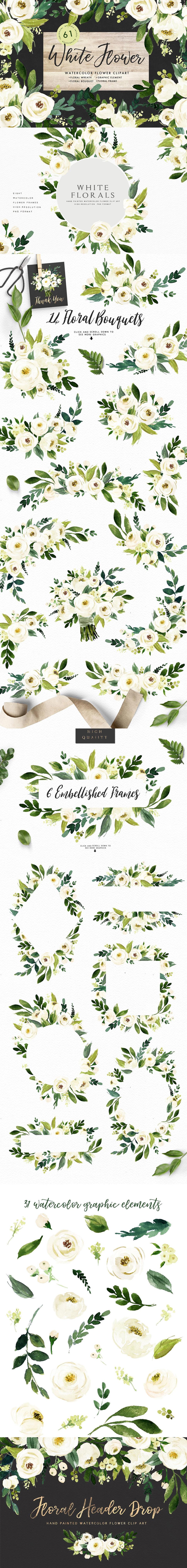 Watercolor white flower clip art vector illustrations art