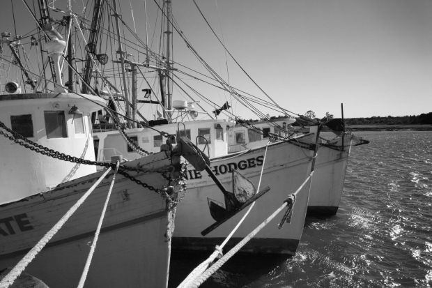 Mary Ross Waterfront Shrimp Boats City By The Sea Historical Sites Golden Isles