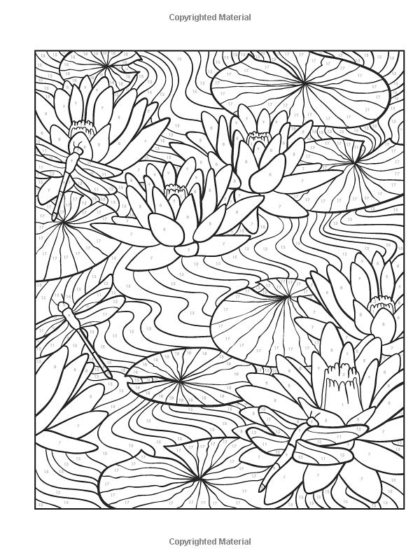 Creative Haven Floral Design Color By Number Coloring Book Creative Haven Coloring Books Jessica Mazu Coloring Books Creative Haven Coloring Books Batik Art