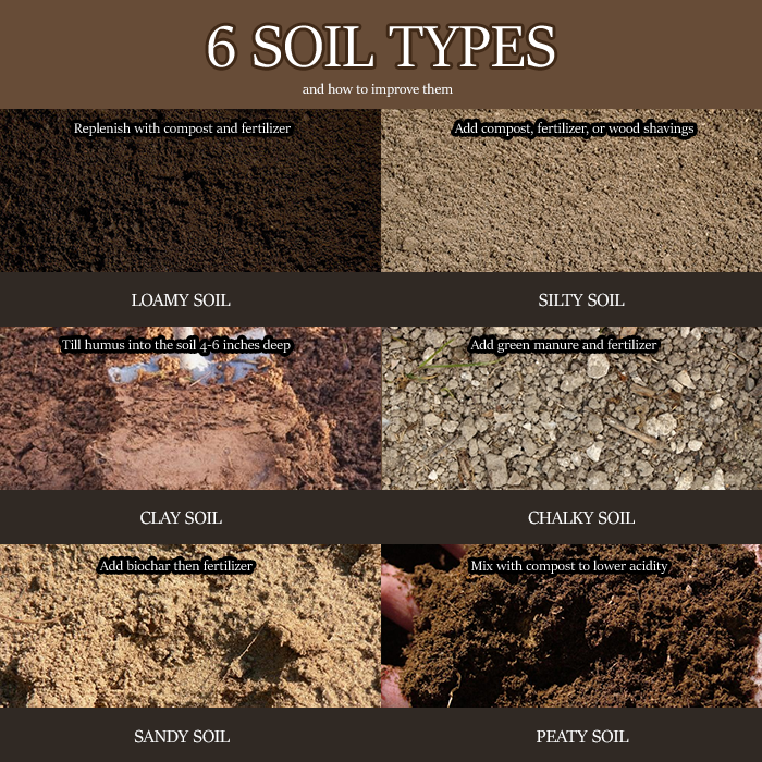 Here Are Six Types Of Soil And Quick Tips On Improving Their Conditions For Gardening Purposes