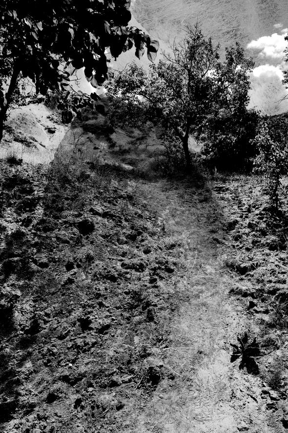Sunday S Overlay Dirt Path Delik Photo Design Photography Design Portfolio Design