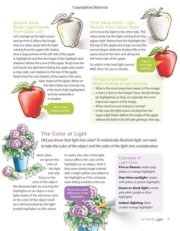 Copic Coloring Guide Level 4: Fine Details: Colleen Schaan, Marianne ...