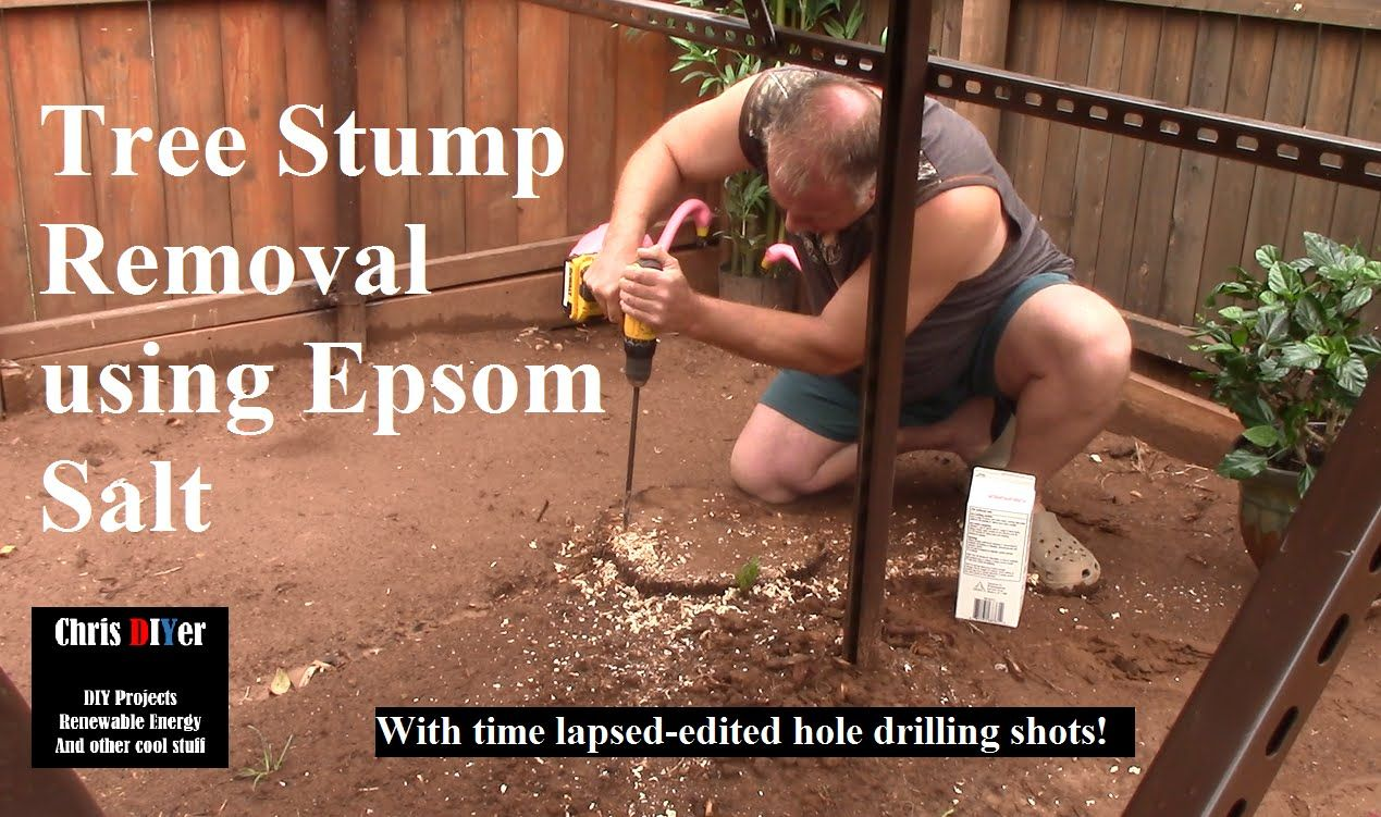 How to Removing a Tree Stump using Epsom or Rock Salt (we